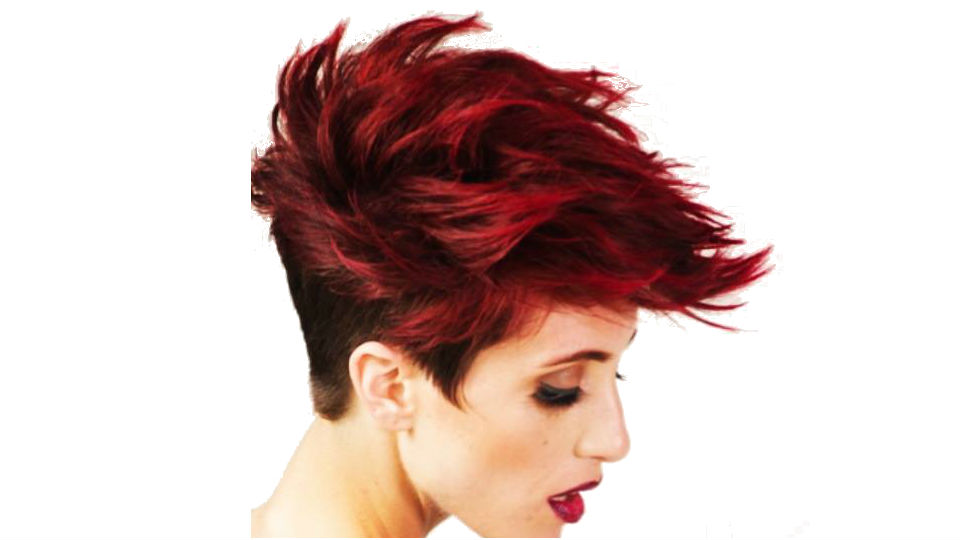 Stardust Salon New Orleans Hair Cuts Color And Style